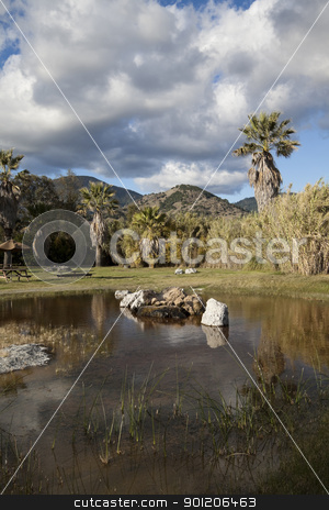 Pond stock photo, A natural pond with water and fall colors by Kevin Tietz