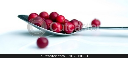 Cranberries stock photo, Cranberries by baggiovara