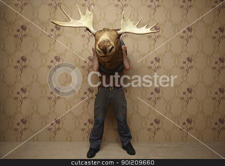 man is hiding stock photo, man is hiding behinde a moose head by sielemann