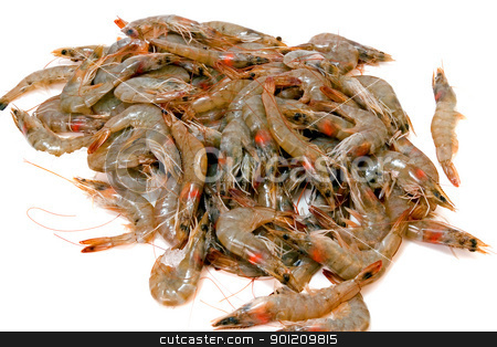 Shrimp Pile stock photo, Fresh shrimp with heads from the market by Jack Schiffer