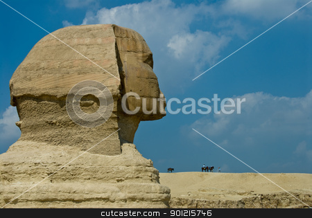 Side of sphinx stock photo, Close up of sphinx head from the side, Egypt, Cairo by Fiona Ayerst Underwater Photography