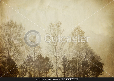 Trees on vintage paper sheet. stock photo, Trees on vintage paper sheet. by pashabo