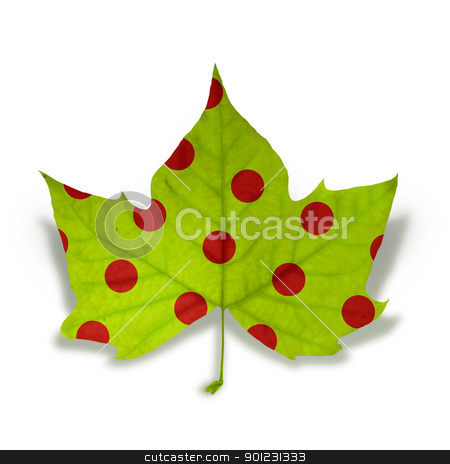 Fashion Autumn leaf isolated over white with clipping path stock photo, Decorative fall leaf with red dot texture isolated over white background with clipping path, so you can easily cut it out and place over the top of a design. by Cienpies Design