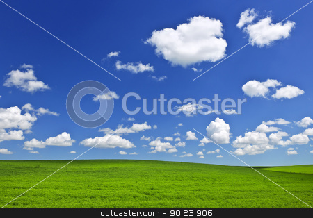 Green rolling hills under blue sky stock photo, Lush green lentil and wheat fields under blue sky in Saskatchewan prairies of Canada by Elena Elisseeva