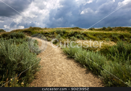 Trail in Badlands in Alberta, Canada stock photo, Walking trail in Badlands with dramatic sky in Dinosaur provincial park, Alberta, Canada by Elena Elisseeva