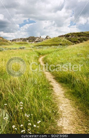 Trail in Badlands in Alberta, Canada stock photo, Hiking trail through Badlands in Dinosaur provincial park, Alberta, Canada by Elena Elisseeva