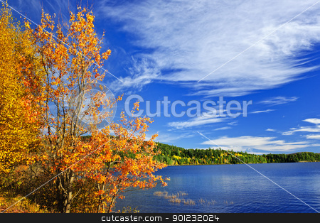 Fall forest and lake stock photo, Lake and fall forest with colorful trees in Algonquin Park, Canada by Elena Elisseeva
