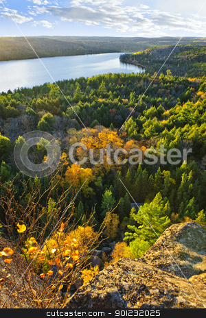 Fall forest and lake top view stock photo, Lake and fall forest with colorful trees from above in Algonquin Park, Canada by Elena Elisseeva