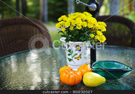 Fall table with gourds and flowers stock photo, Patio table with flowers and gourds in fall by Elena Elisseeva