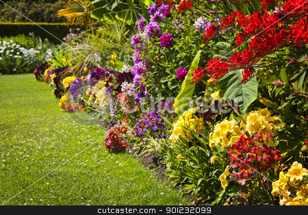 Colorful garden flowers stock photo, Beautiful bright colorful flower garden with various flowers by Elena Elisseeva
