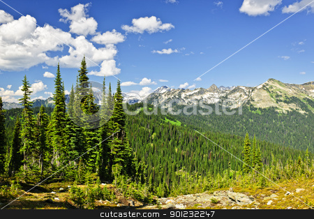Rocky mountain view from Mount Revelstoke stock photo, Scenic view from Mount Revelstoke of rocky mountains in British Columbia, Canada by Elena Elisseeva