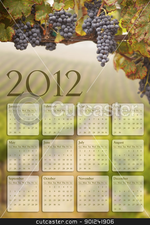 2012 Calendar with Grape Vineyard Background stock photo, Beautiful Lush Grape Vineyard In The Morning Mist and Sun with Room for Your Own Text. by Andy Dean