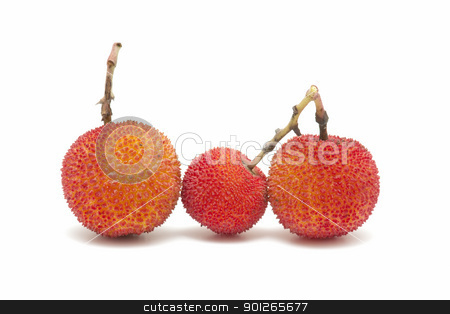 arbutus stock photo, Friut of arbutus on white background by luiscar