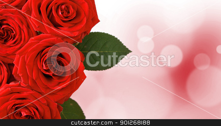 Red roses stock photo, Red roses by Lasse Kristensen@gmail.com
