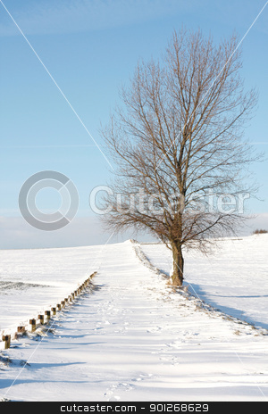 Snow stock photo, Snow landscape by Lasse Kristensen@gmail.com