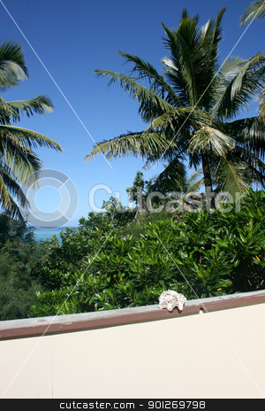 Coconut palms stock photo, Balcony with a coconut palm view and ocean by Lasse Kristensen@gmail.com