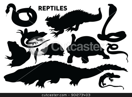 reptiles stock vector clipart, vector set of various reptiles by Emir Simsek