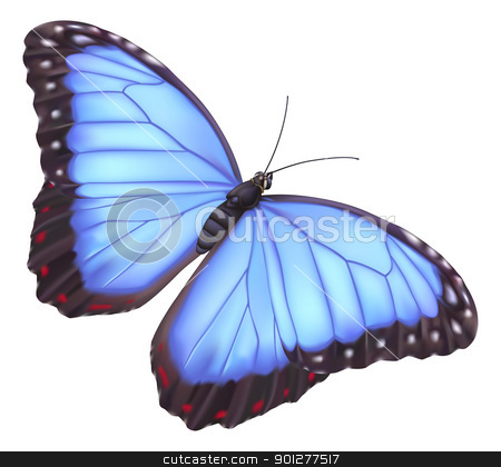 Blue morpho butterfly stock vector clipart, illustration of a beautiful blue morpho butterfly by Christos Georghiou