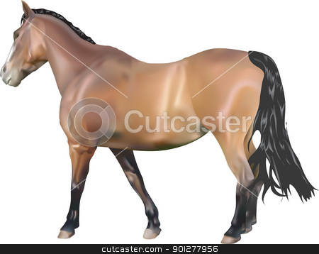 Horse Illustration stock vector clipart, A photorealistic illustration of a horse. Created with meshes by Christos Georghiou
