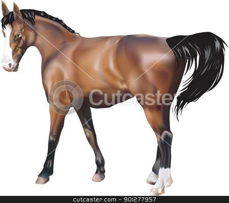 horse Illustration stock vector clipart, A photorealistic illustration of a horse. Created with meshes.  by Christos Georghiou