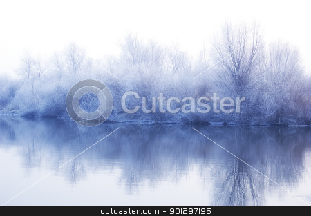 White winter landscape stock photo, White winter landscape - frozen trees reflected in water by johnnychaos