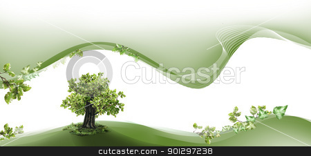Nature header and footer stock photo, Nature header and footer with beech tree by TLFurrer