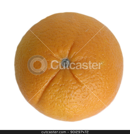 Oragne Isolated stock photo, An orange isolated on white viewed from above by Tyler Olson