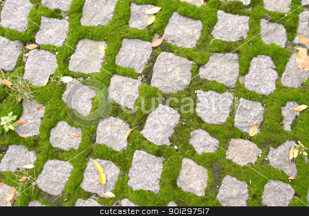 Cobblestone Texture stock photo, Cobblestone texture image with grass growing by Tyler Olson