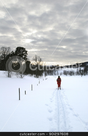 Cross Country Skiing stock photo, Mountain Skiing by Tyler Olson