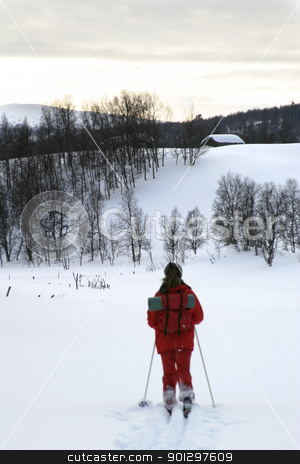 Cross Country Skier stock photo, Skier looking at a cabin by Tyler Olson