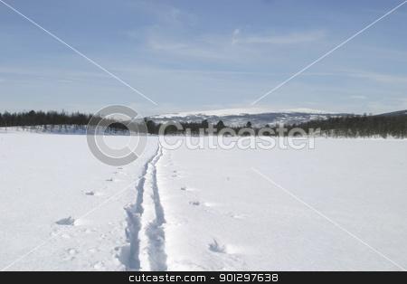 Ski Trail stock photo, Ski trail across a forzen lake by Tyler Olson