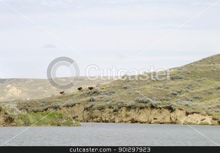 River Hills stock photo, South Saskatchewan River Hills, on Diefenbaker Lake, near Beaver Flat by Tyler Olson