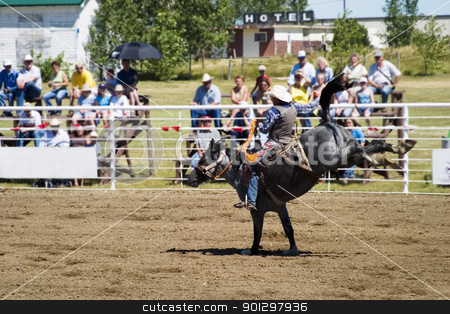 Bare Back Riding stock photo, Bare back riding at the Herbert Rodeo, Saskatchewan by Tyler Olson