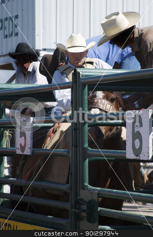 Saddle Bronc stock photo, Saddle Bronc riding by Tyler Olson