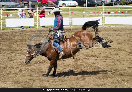 Saddle Bronc stock photo, Saddle Bronc riding a small town rodeo by Tyler Olson