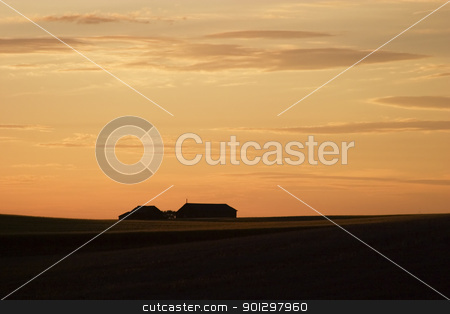 Saskatchewan Horizon stock photo, Saskatchewan Horizon at Sunset by Tyler Olson