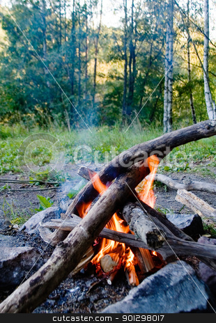 Camp Fire stock photo, Camp fire in the outdoors, open flame. by Tyler Olson