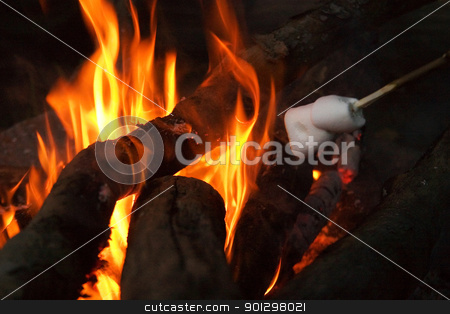Camp Fire stock photo, Camp fire at night. by Tyler Olson