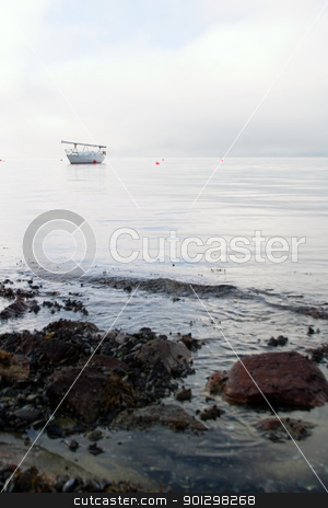Sail Boat in Fog stock photo, A sail boat in the Oslo Fjord on a foggy day. by Tyler Olson
