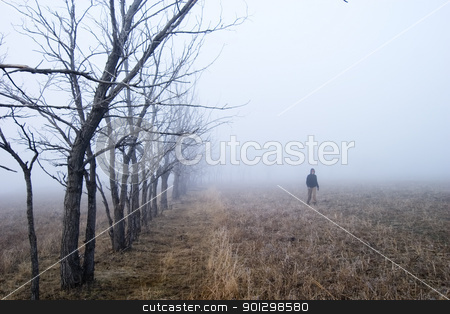Fog Walk stock photo, Walking in the fog by Tyler Olson