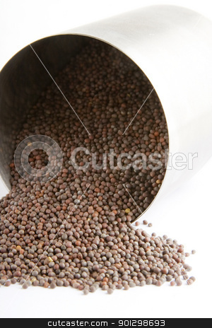 Black Mustard stock photo, Bulk black (Brassica hirta) mustard spilling froma container by Tyler Olson