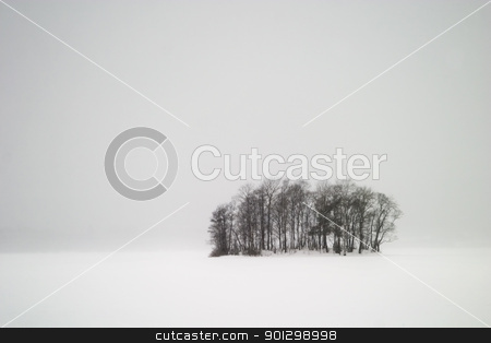 Frozen Lake with Trees stock photo, A grouping of trees on a frozen lake during winter, Oslo, Norway.  The picture is taken while it is snowing so visibility is limited. by Tyler Olson