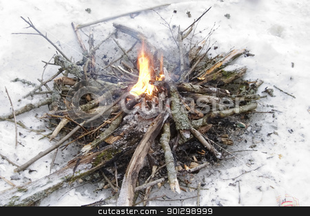 Fire on Ice stock photo, A bonfire on a frozen lake, in the snow. by Tyler Olson