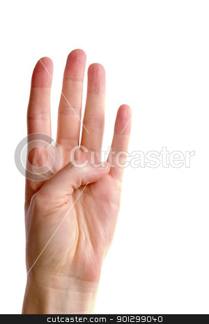 Four Fingers stock photo, An adult female hand holding four fingers in the air, fairly close together (with clipping path) by Tyler Olson