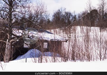 Winter Cabin stock photo, A winter cabin in winter scene by Tyler Olson