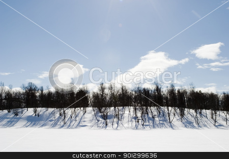 Frozen Lake Landscape stock photo, A frozen lake covered in snow with a blue sky and lens flare. by Tyler Olson
