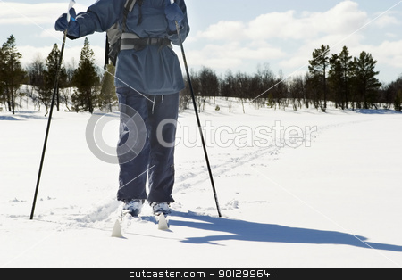 Cross Country Landscape stock photo, A skier on a wintery snow filled landscape. by Tyler Olson