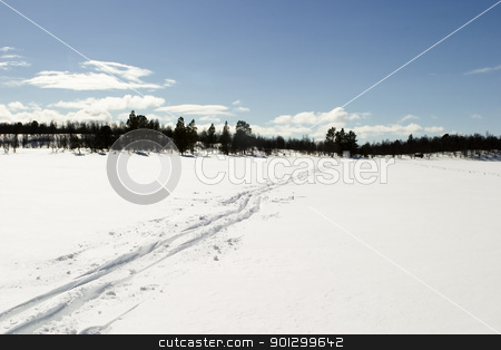 Cross Country Ski Trail stock photo, Cross country skiing trail accross a frozen lake. by Tyler Olson