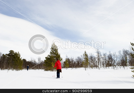 Cross Country Skiing stock photo, A ski adventure on a snowy landscape by Tyler Olson