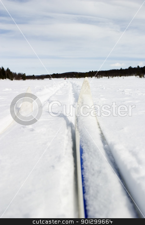 Cross Country Skiing stock photo, Cross country skiing trail and skis across a frozen lake. by Tyler Olson